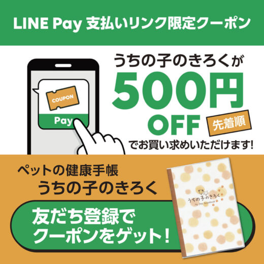 LINE Pay_coupon